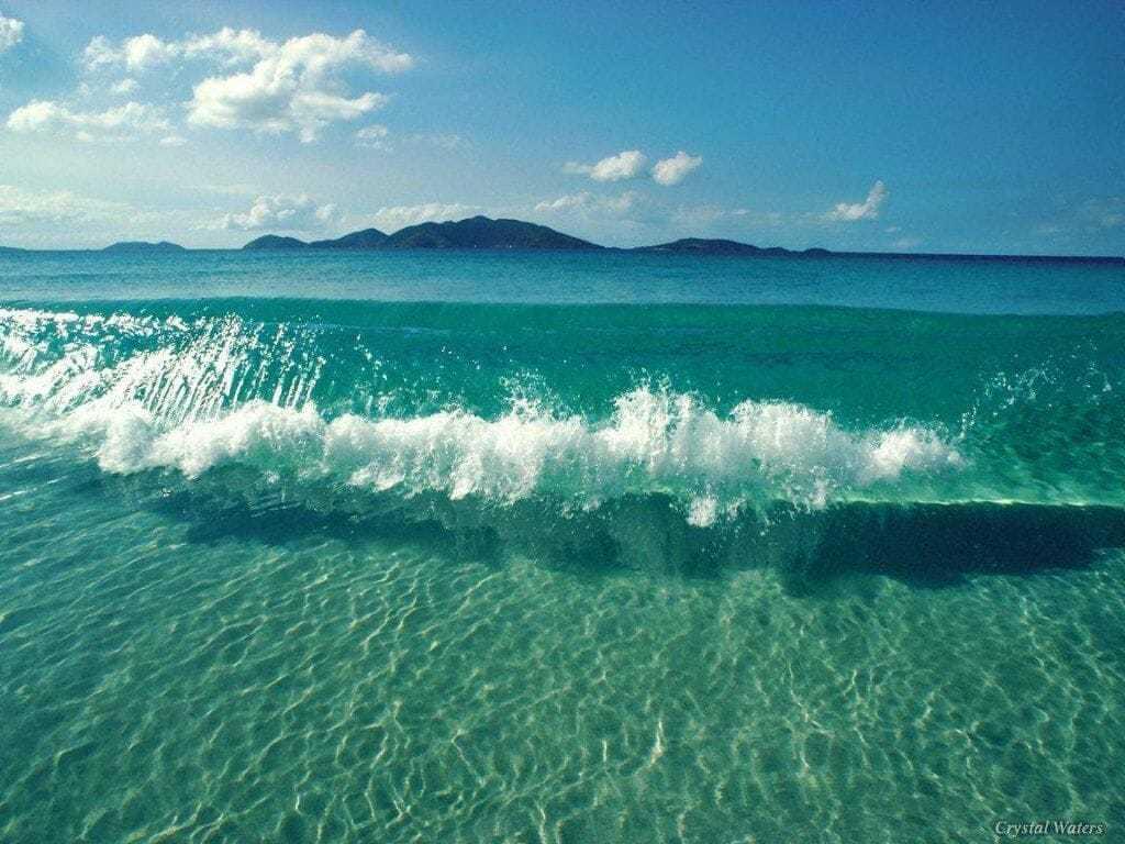 цвет океана скачать торрент