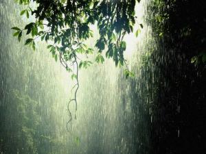 Rain F 300x225 Разноцветные дожди