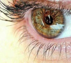 eye 300x269 Как видят наши глаза?