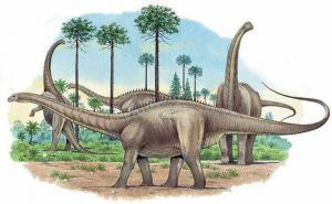 Апатоза́вр (лат. Apatosaurus, «обманчивый ящер», ранее бронтозавр, лат. Brontosaurus, «громовой ящер»))