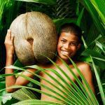 Cемена гигантской веерной пальмы