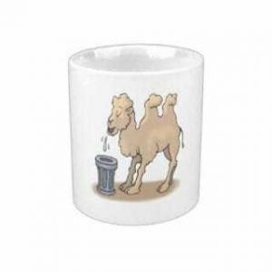 Плюющийся верблюд