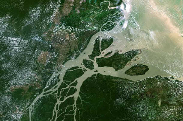 Дельта Амазонки