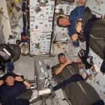 Спящие космонавты
