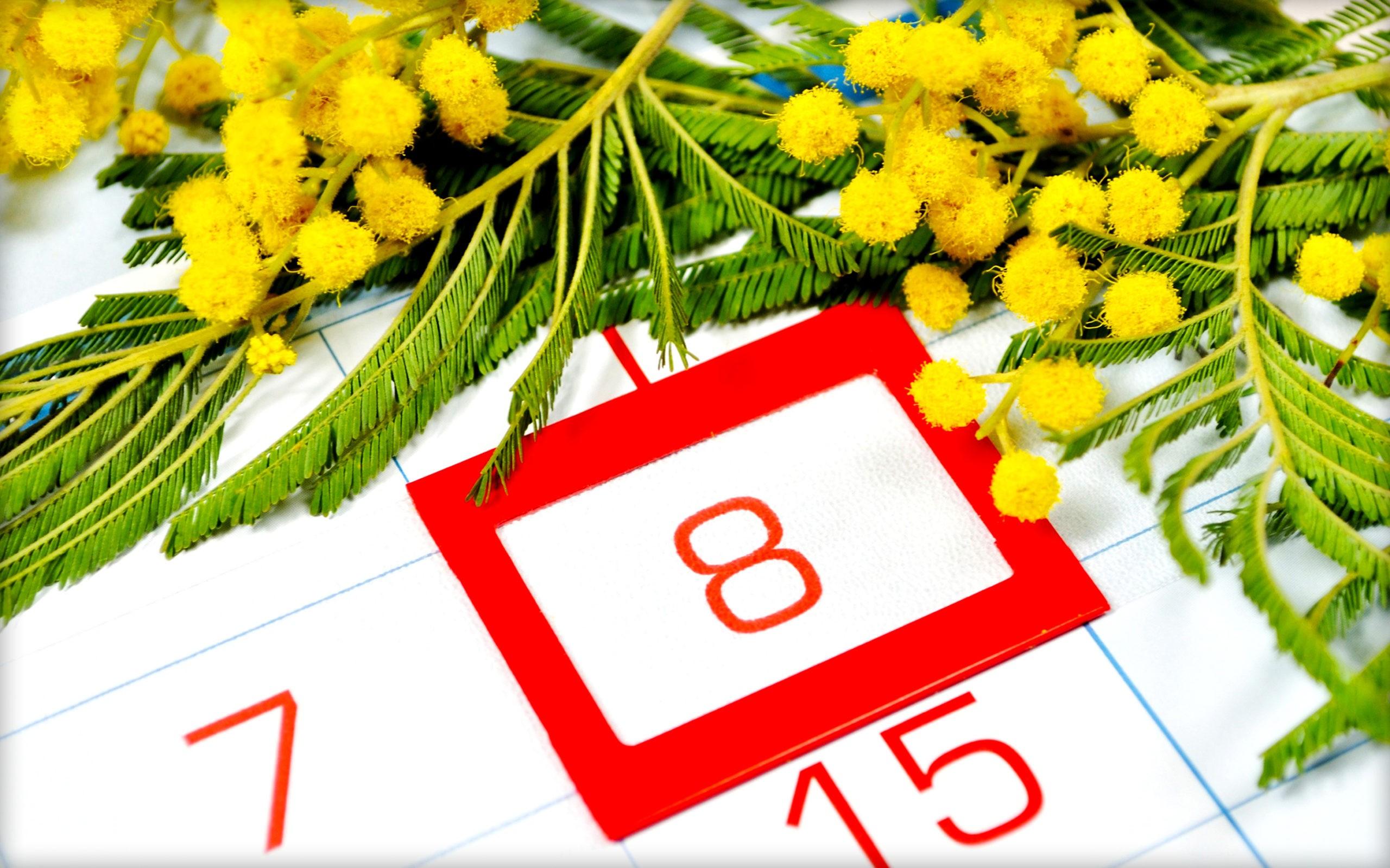 8 марта – Международный женский день. История праздника, когда появился, традиции, как празднуют, фото и видео
