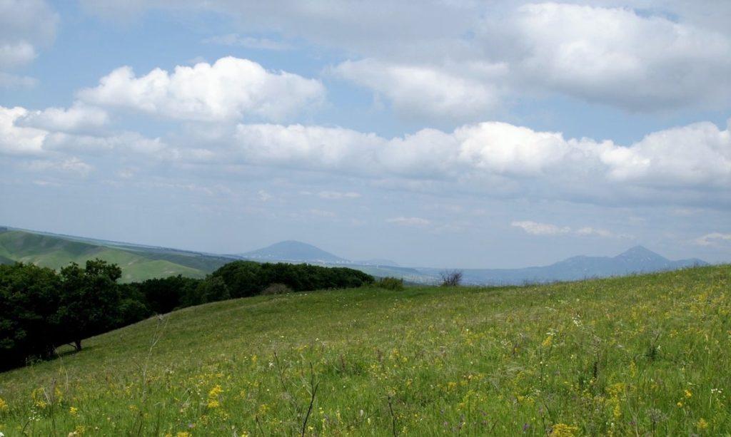 Фото кавказской степи