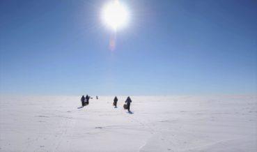 Северный полюс 🌟 Описание, особенности, расположение, климат, флора, фауна, фото и видео