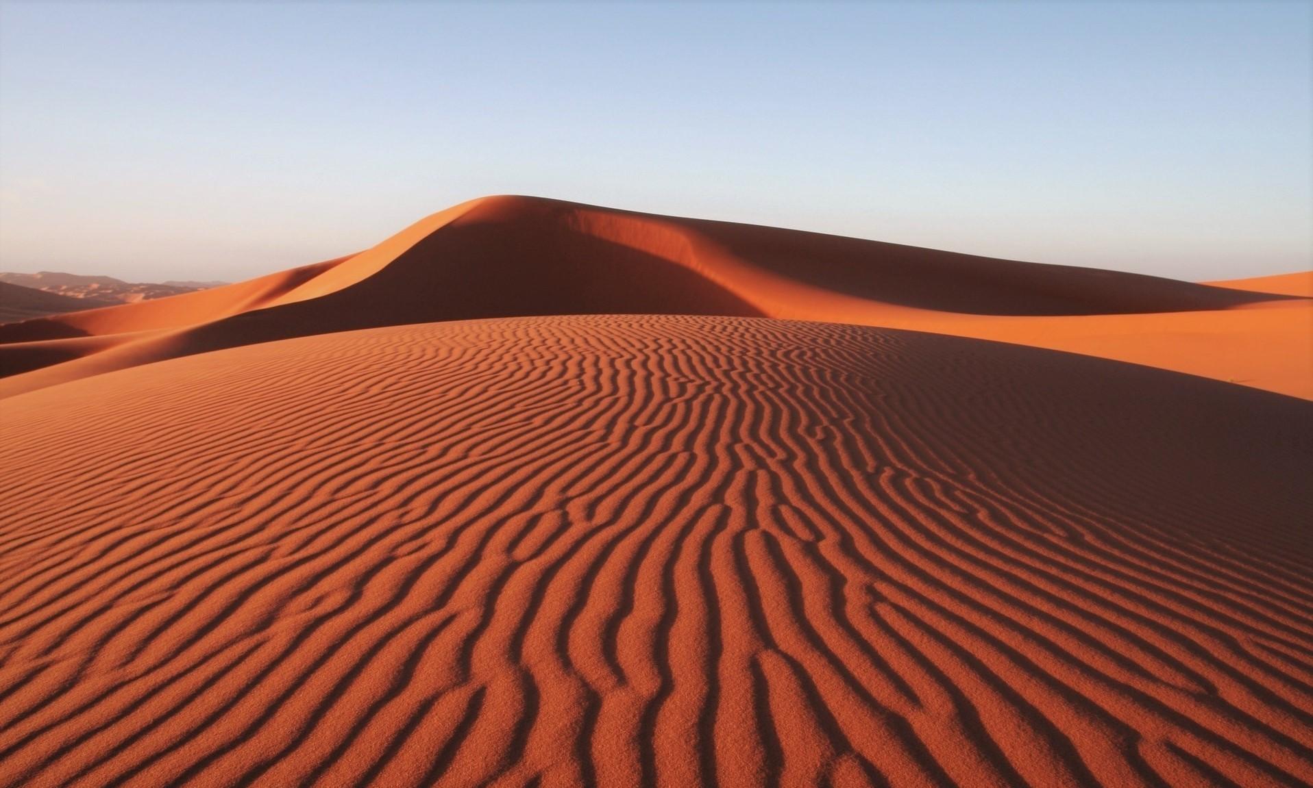 Пустыня - описание, особенности, классификация, флора, фауна, фото и видео
