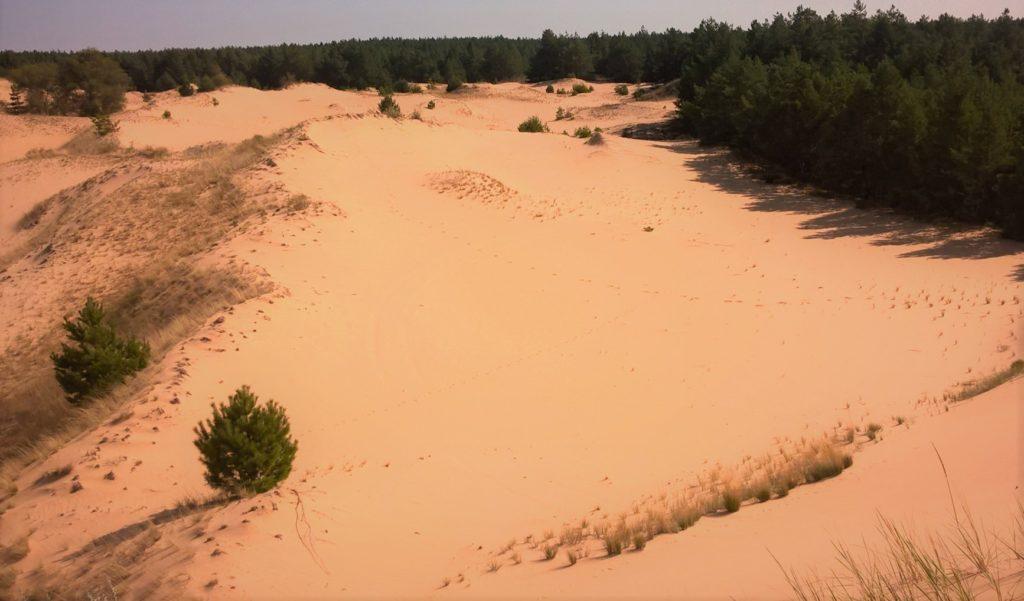 Арчединско-Донские пески