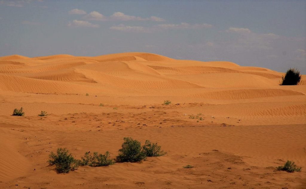 Рын-пески