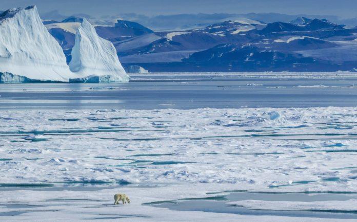 Северный полюс - Описание, особенности, расположение, климат, флора, фауна, фото и видео