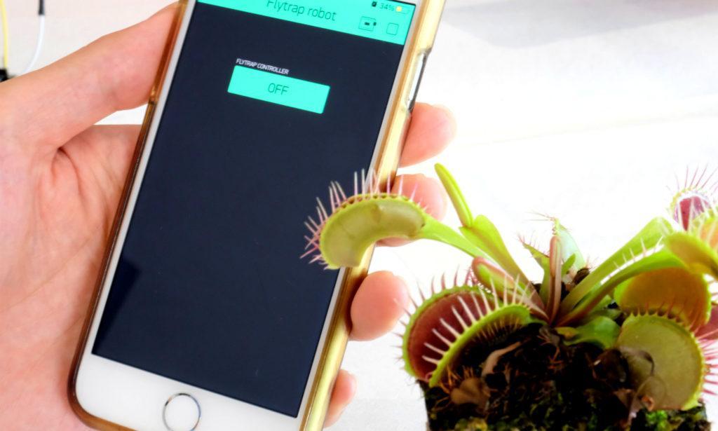 Электрические сигналы передаются на растение с помощью смартфона, заставляя венерину мухоловку закрывать свои листья по требованию