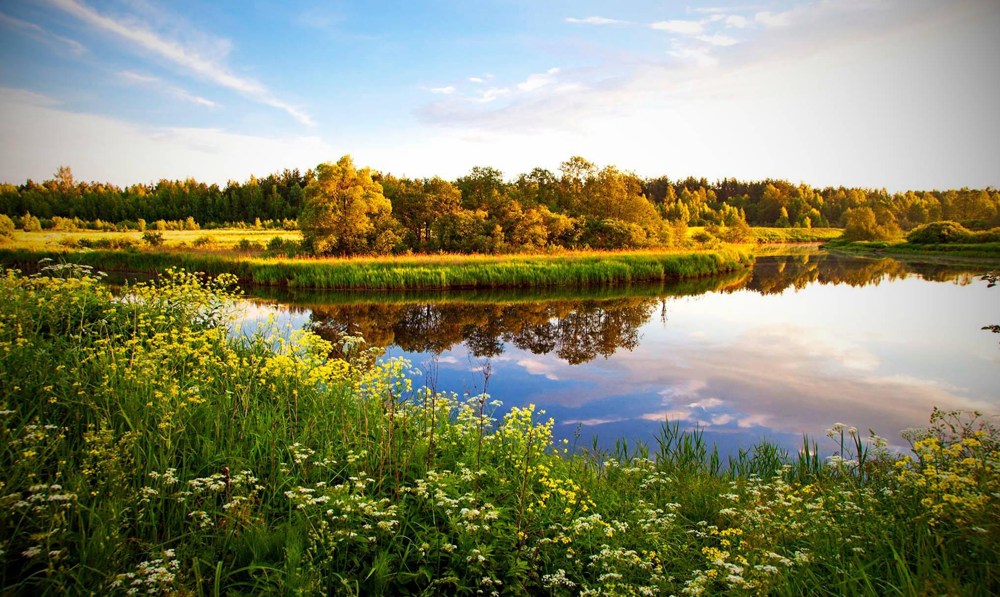 Исследование: к 2100 году лето в Северном полушарии может длиться почти полгода