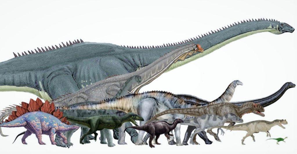 Сравнение размеров разных видов динозавров