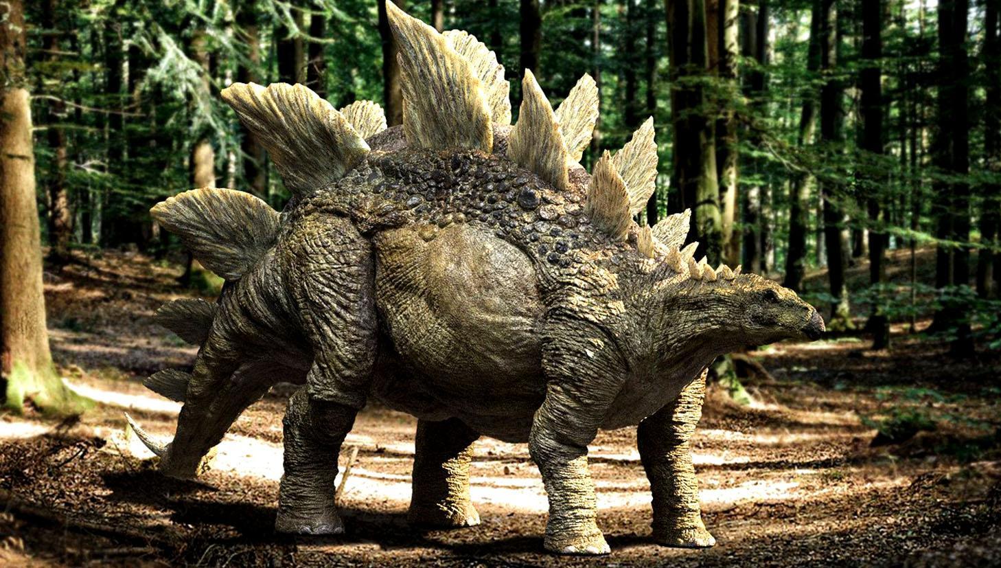 Был ли у динозавров второй мозг?