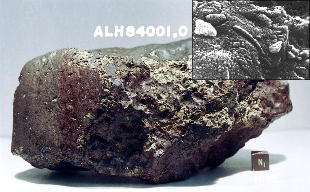 Марсианский метеорит Allan Hills 84001. Электронный микроскоп показывает вероятные структуры бактерий (в центре изображения)