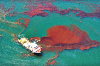 Разработан альтернативный метод борьбы с разливами нефти в морях