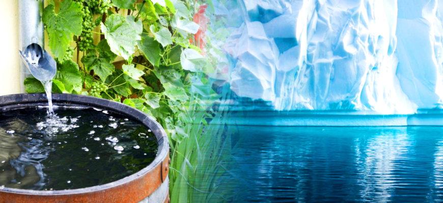 Какая вода чище: дождевая или ледниковая?