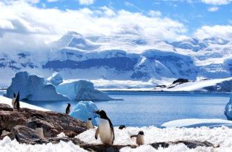 В Антарктиде зарегистрирована самая высокая температура за всю историю