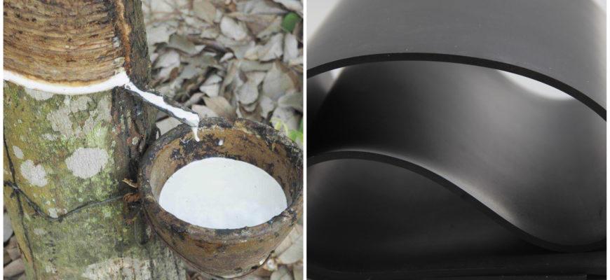 Чем отличается каучук от резины?