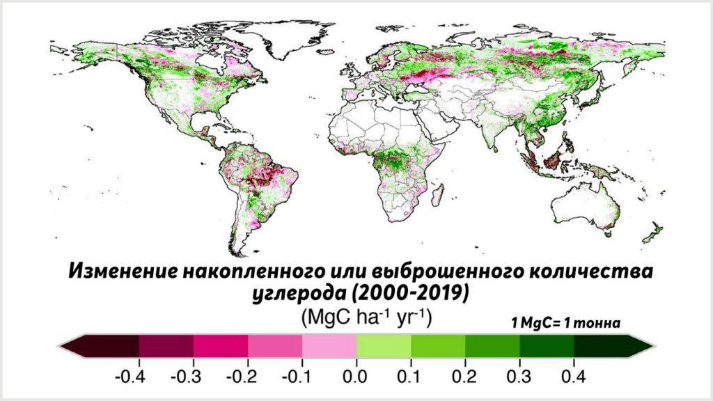 Более зеленые районы поглощали больше углерода, чем выделяли, в то время как более розовые и фиолетовые регионы выделяли больше углерода, чем хранили