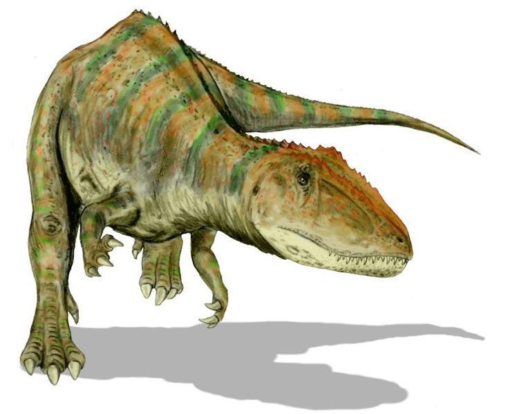 Картинки по запросу Андазавр