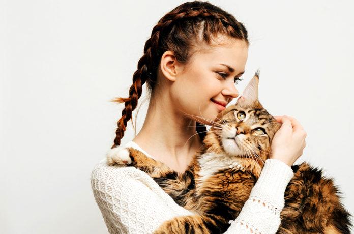 Бывает ли у животных аллергия на человека?