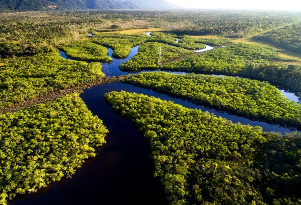 Амазонка - самая полноводная река в мире (Южная Америка)