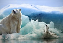 Почему Арктика теплее Антарктики?