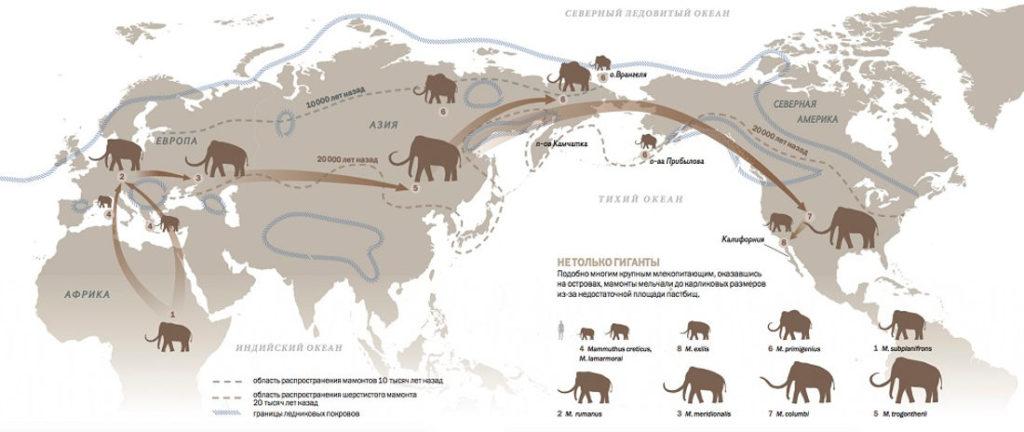 Ареал обитания мамонтов