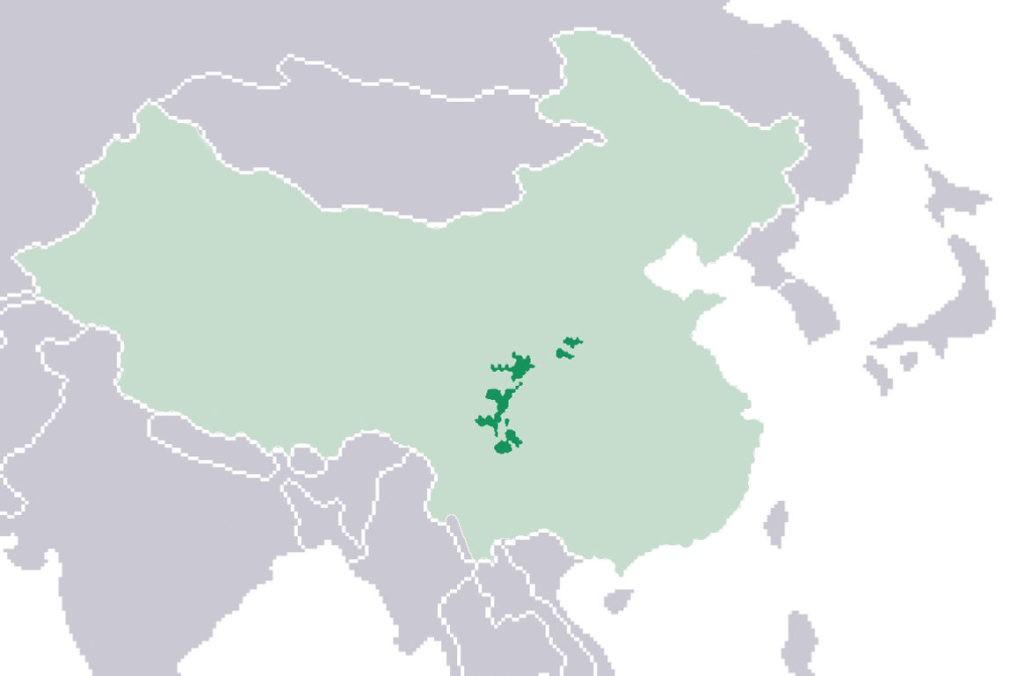 Ареал обитания панд