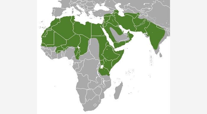Полосатая гиена - ареал