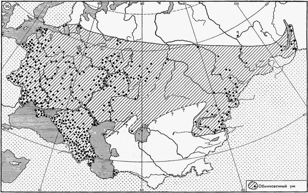 Ареал обитания обыкновенного ужа на территории Европы