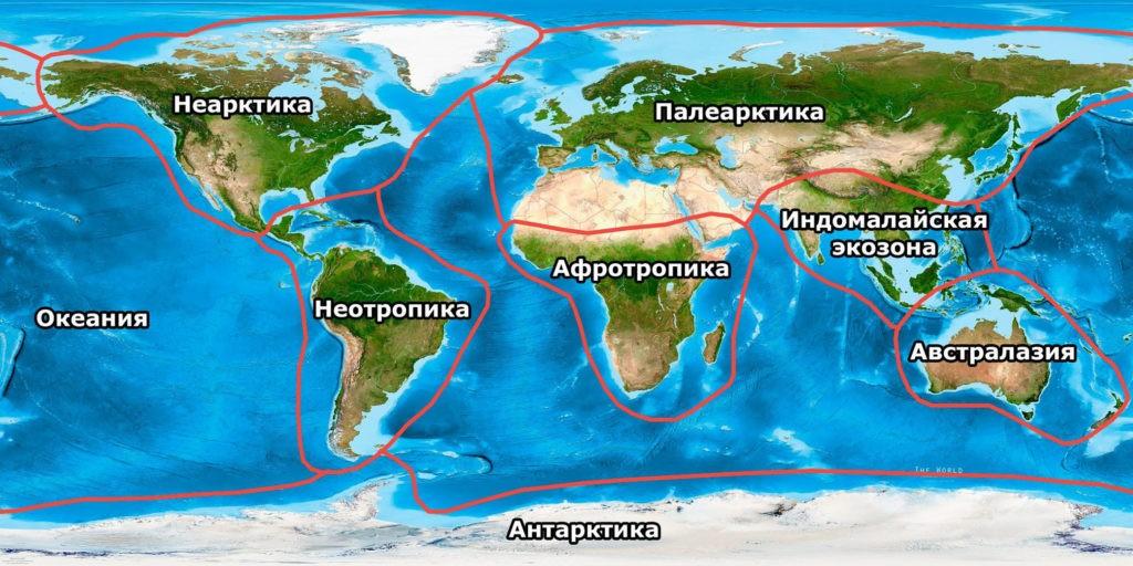 Биогеографические зоны, классификация по WWF