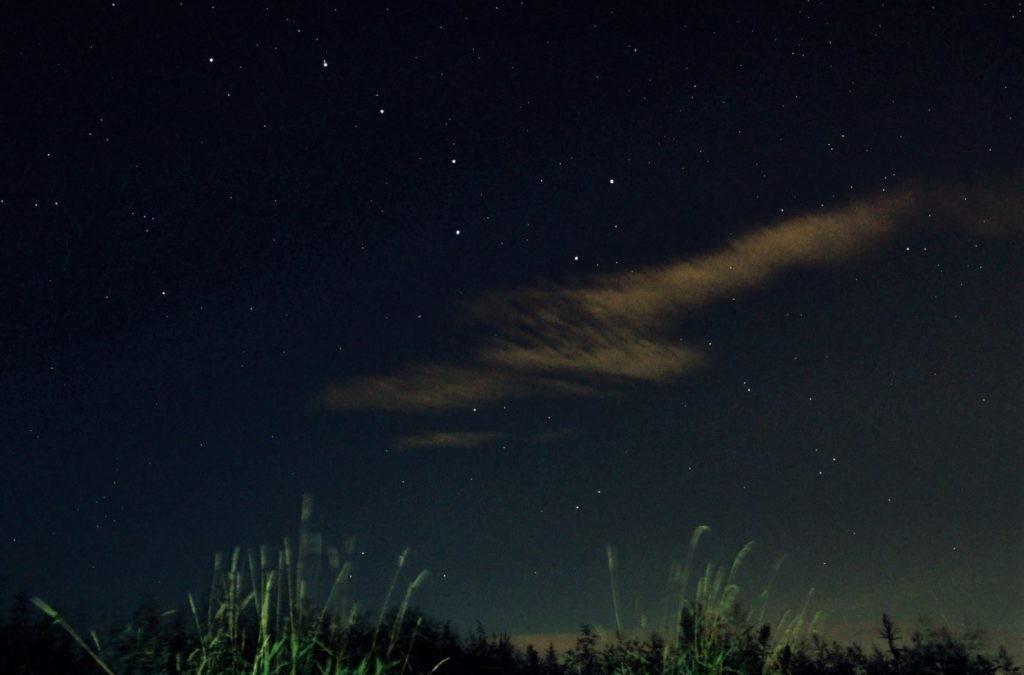 Фотография Большой Медведицы на ночном небе