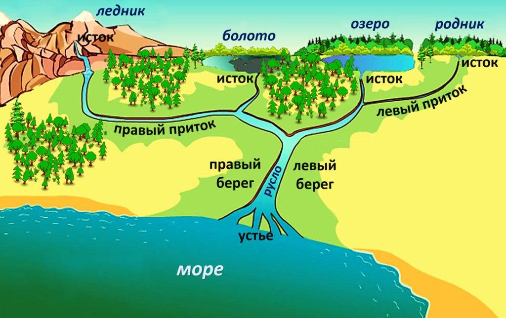 Из каких частей состоит река