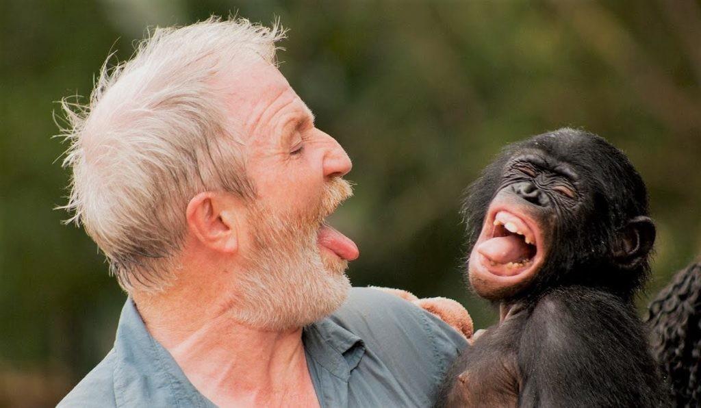 Некоторые люди прекрасно ладят с обезьянами