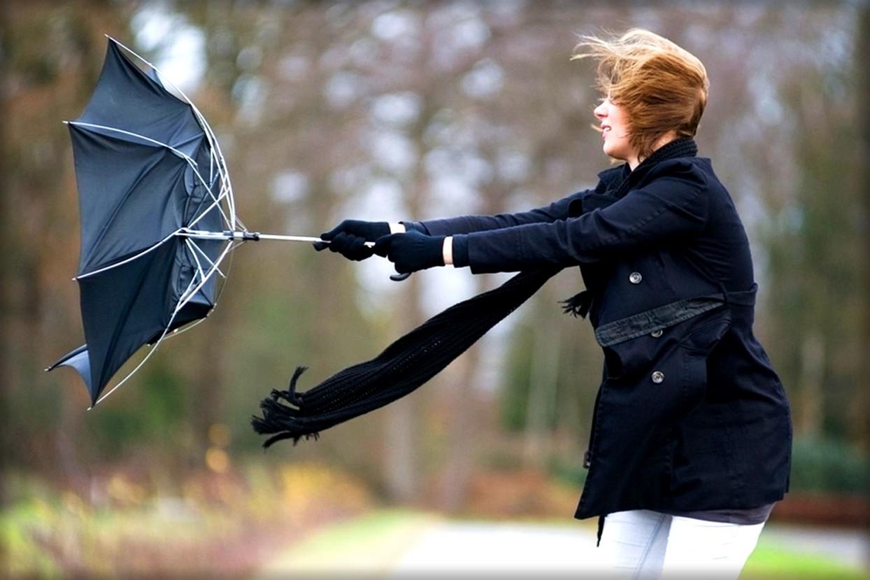 В каких городах России самые сильные ветры?