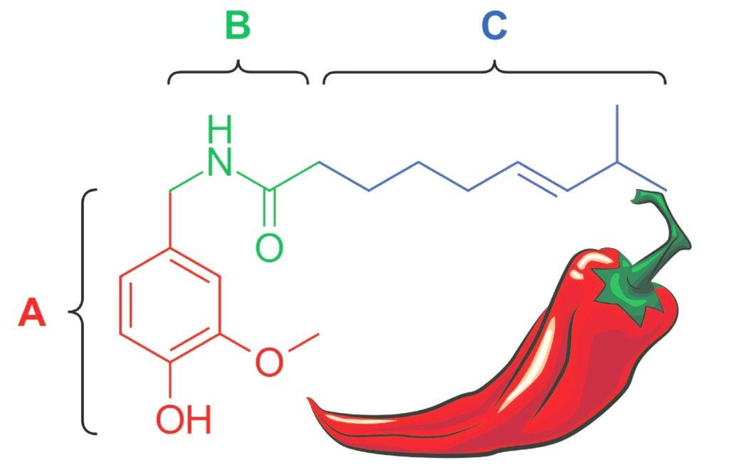 Химическая формула капсаицина