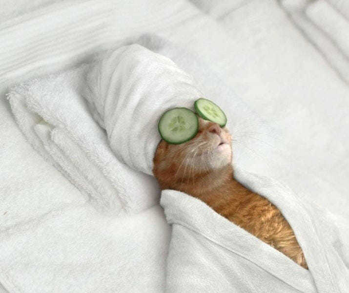 Отдых после стресса