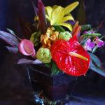 Цветы – интересные факты
