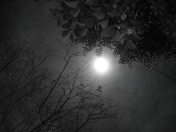 Почему ночью темно