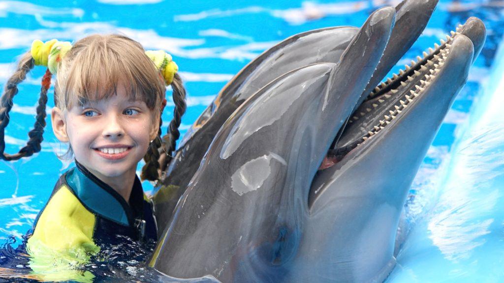 Дельфины любят играть с детьми