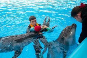 Лечение дельфинами