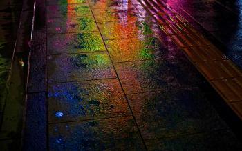 Бензиновые следы после дождя