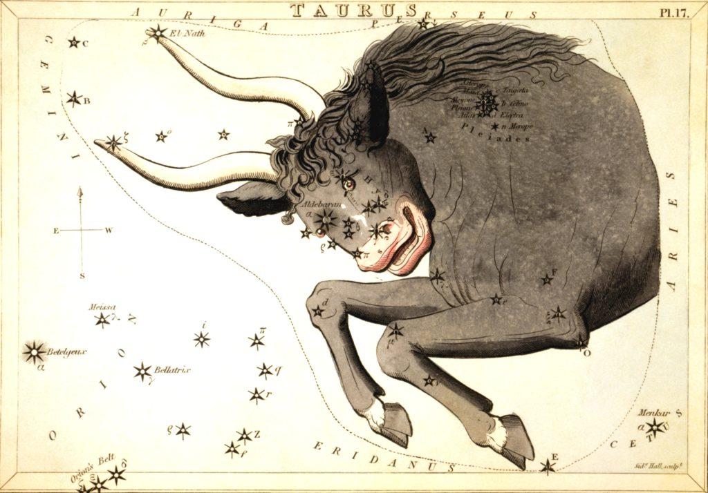 Изображение Тельца на древнегреческой звездной карте