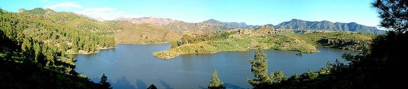 Экосистема озера соседствует и взаимодействует с экосистемами окружающего её леса и другими экосистемами