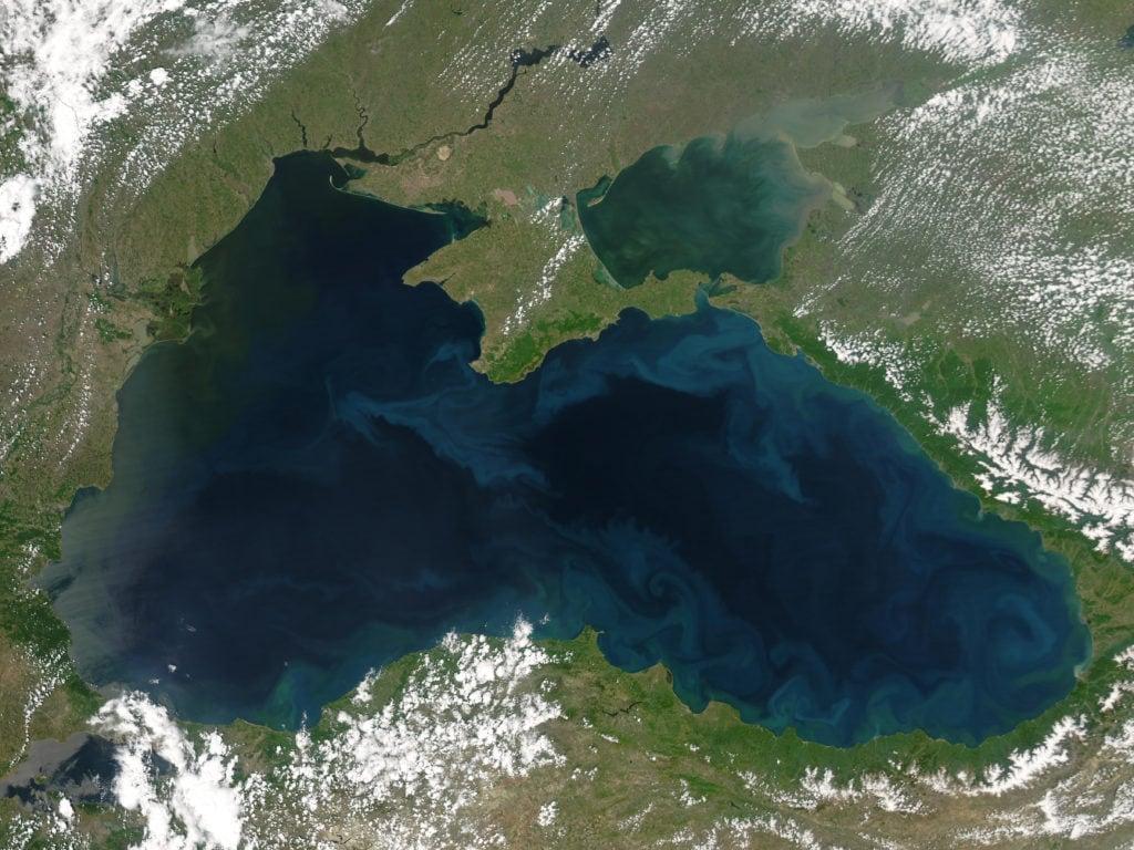 Фитопланктон в Чёрном море. Май 2004 года