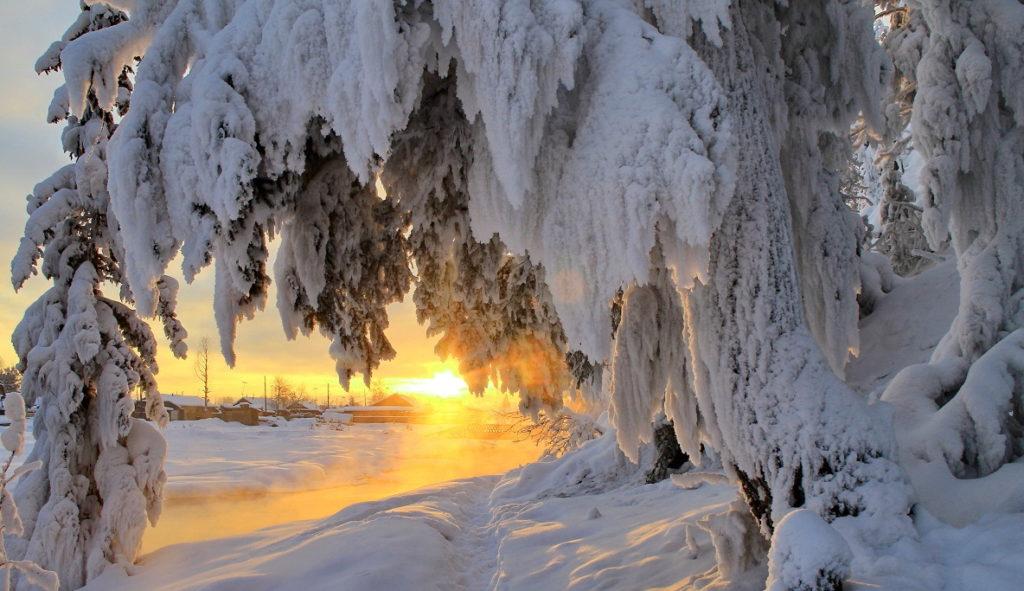 Фото с территории Сибири с резко континентальным климатом