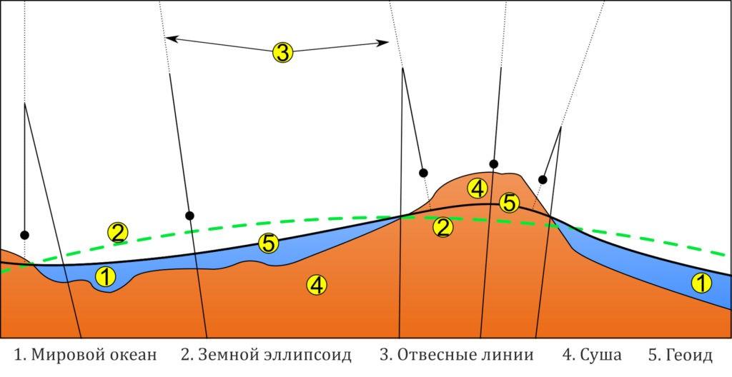 Сравнительная схема форм